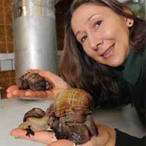 Dudley Zoo verhuist slakken voor de winter